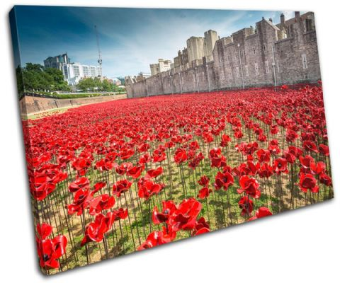 Tower of London Poppies City - 13-2237(00B)-SG32-LO